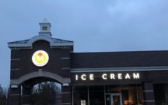 Top five ice cream shops in and around Solon