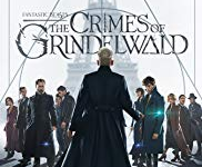 """Fantastic Beasts: The Crimes of Grindewald:"" not fantastic, but not bad"