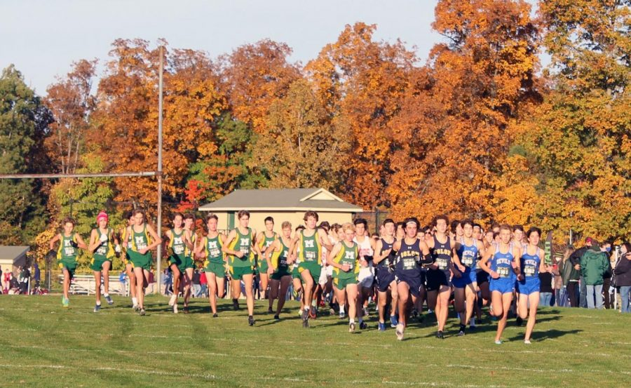 Seniors Johnny Ciccero, Nathan Close and Josh Baker sprint out ahead early at the beginning of the GCC race at Strongsville High School